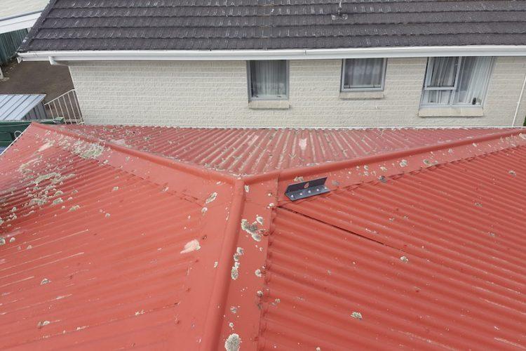 Gibbons St Project Top Kat Roofing